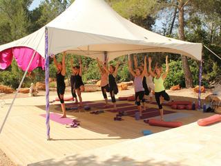 Pure Yoga Ayurveda & Horseriding