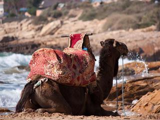 7 Tage Surfurlaub im Surfhaus in Marokko