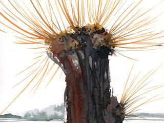 Aquarell-Malreise, malerische Experimente in Ribbeck im Februar