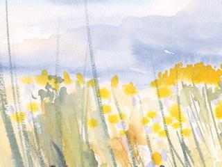 Aquarell-Malreise im September, Landschaft, Blumen, Blumenwiese in Ribbeck