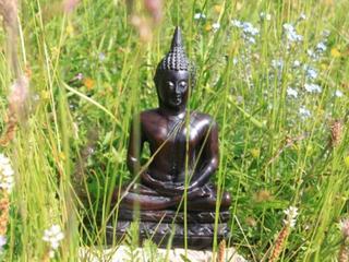 Buddhistische Weisheitslehre & Yoga mit Ursula Lyon