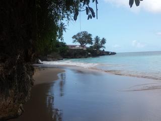 8 Tage Malen auf Tobago, ein Traum von Karibik