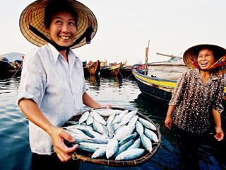 Fahrradurlaub Vietnam: Von der Halong-Bucht zum Mekong-Delta