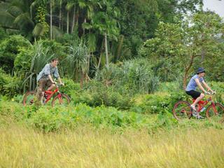 Sri Lanka - Radurlaub auf der grünen Tropeninsel