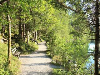 Retreaturlaub indigourlaub gmbh yogaurlaub fuer die frau im nationalpark
