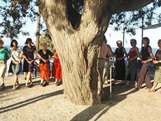 Tanzreise nach Griechenland auf die Insel Ikaria in der Ägäis
