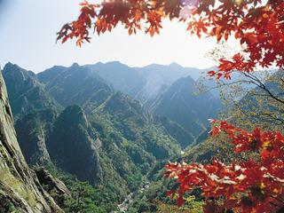 Retreaturlaub reisefieber reisen gmbh korea temple stay rundreise mit megacity seoul tempelaufenthalt und seoraksan nationalpark