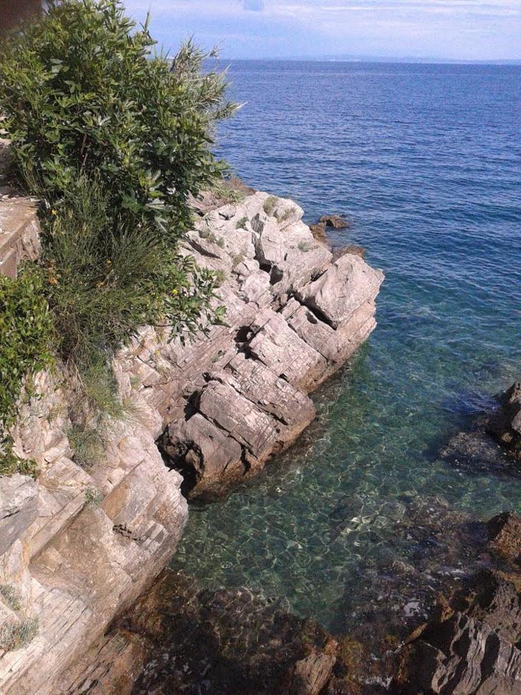 Retreaturlaub yogalovin retreats in croatia yoga und maronenfest in lovran kroatien 22 29 oktober 2017 in bezaubernder meer berge umgebung