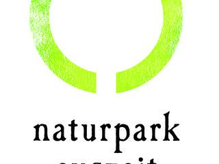 Retreaturlaub naturpark auszeit verein zur foerderung der salutogenese auszeit und waldbaden kraftvolle stille in gruen