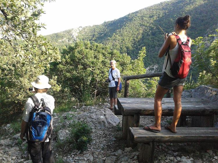 Retreaturlaub yogalovin retreats in croatia yoga und maronenfest in lovran in bezaubernder meer berge umgebung