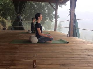 Retreaturlaub doux yoga autumn breeze yoga retreat inmitten der farben und duefte suedfrankreichs