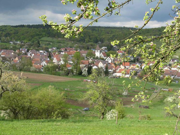 3 Tage Yoga und Wandern im Naturpark Stromberg (liegt zwischen Stuttgart, Heilbronn und Karlsruhe)