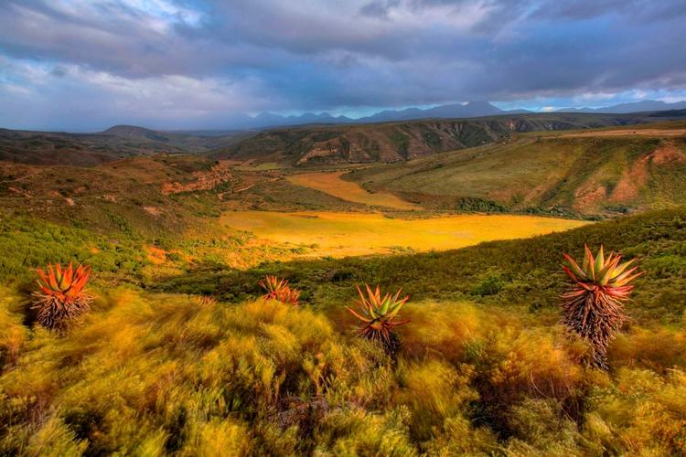 Retreaturlaub peak potentials suedafrika safari retreat