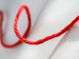 Workshop für ein waches Bewusstsein: die Liebe leben, den roten Faden finden, Symptome verstehen