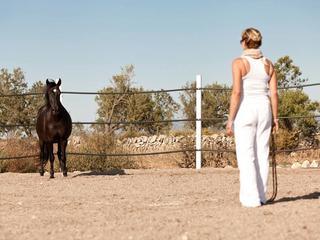 Frauenreise 2019 - 6 Tage Genuss & pferdegestütztes Coaching auf Mallorca