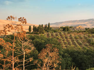 Soul of Sicily – 8 day Yoga and Meditation Retreat