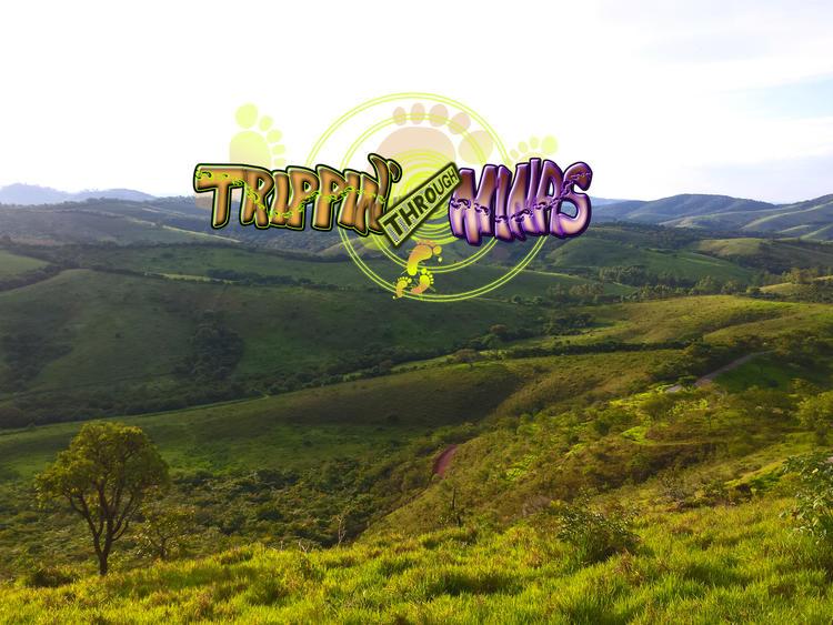 Trippin' through Minas 2019