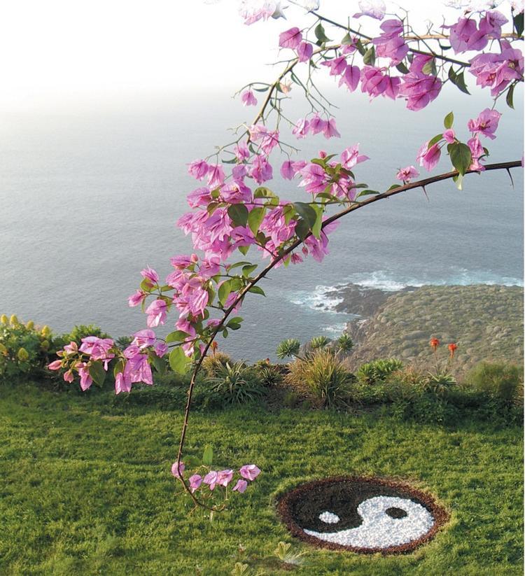 Yoga & Meditations-Woche in Jardin Mariposa im Norden Teneriffas