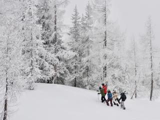 Retreaturlaub goodtimes sportreisen gmbh yoga im schnee mit jule nusskern