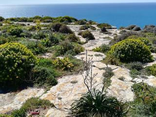 RAUS IN DIE ZUKUNFT- WESENTLICH WERDEN - EinzelRETREAT auf Gozo