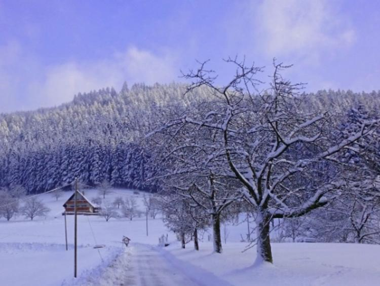 Retreaturlaub art of living germany e v art of living stille retreat