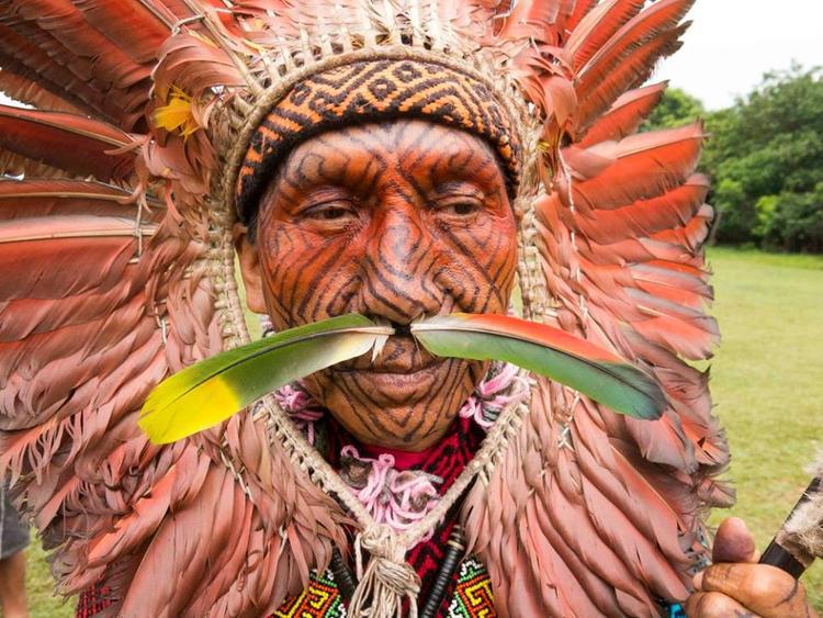 Retreaturlaub trippin through dimensions trippin mit ni yuxibu im amazonas und den huni kuin eingeborenen authentische urwalderfahrung