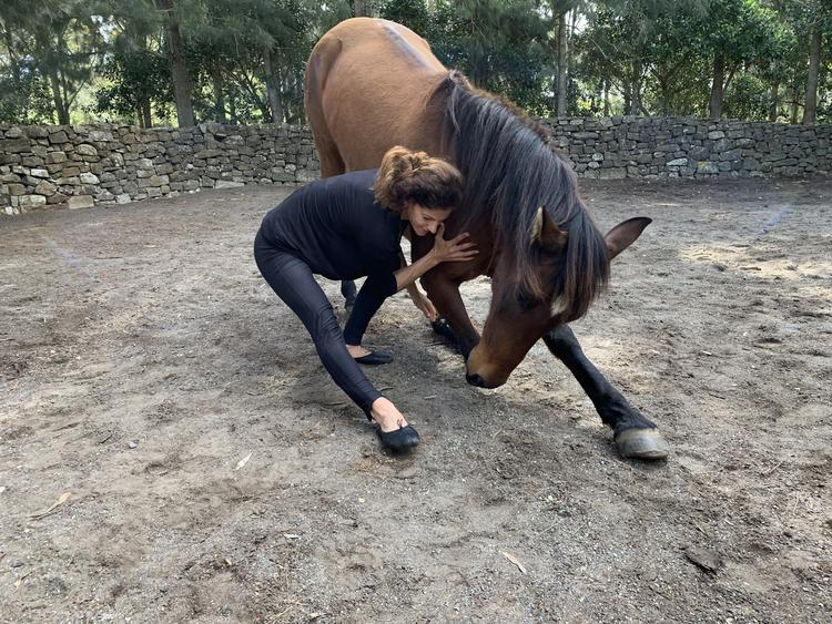 Pferden mit CAVALLUNA