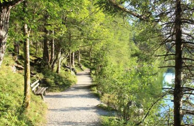 Retreaturlaub indigourlaub gmbh kreative schreibreise im nationalpark