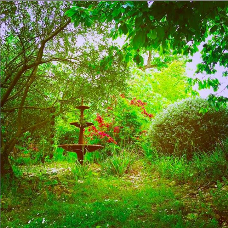 6 Tage Yin Yang Alchemie im Chez Zen Holistic Retreat Center auf dem Land in Südfrankreich