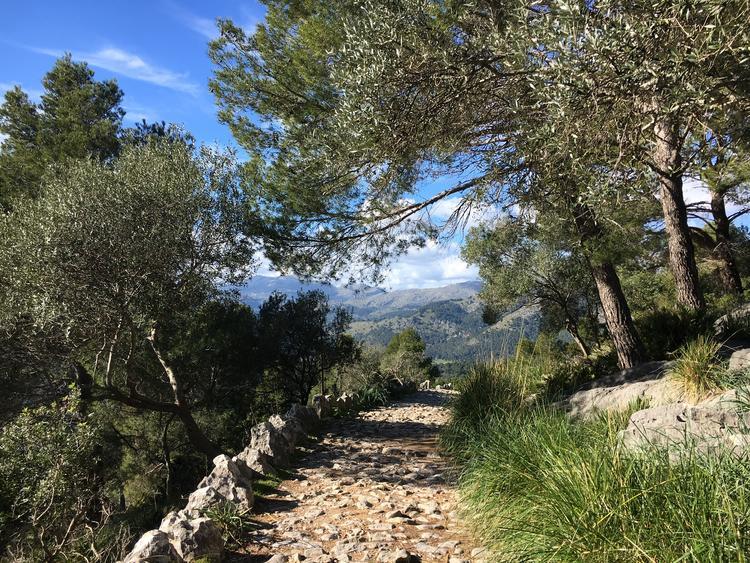 Retreaturlaub holistic empowerment walk breathe achtsamkeit wandern auf mallorca