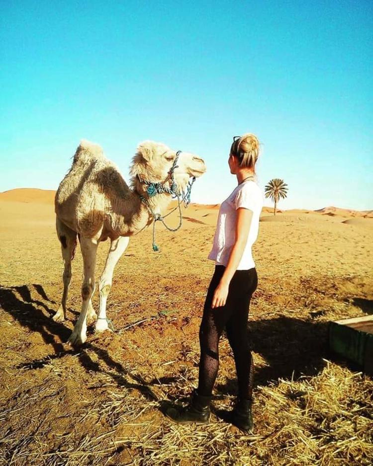 Retreaturlaub danielaholzer10 hotmail com yoga meets desert trip 1001 nacht 03e89b9c dcc4 40be 9fca ab3166f044c7