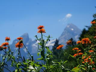 Berg Retreat zur Erdung, Rückverbindung & Aktivierung Spiritueller Kraft