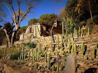 Fasten nach Buchinger - Yoga - Wandern - Montseny Barcelona