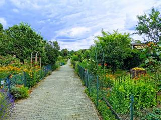 Fastenwandern, Detox & Achtsamkeit im grünen Südwesten von Berlin