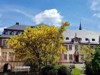 Kloster Auszeit mit Slow Motion, Mindfulness & Meditation