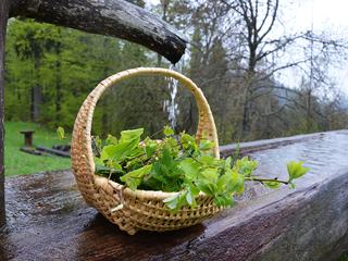 Stay healthy: Wickel, Kompressen und alte Hausmittel