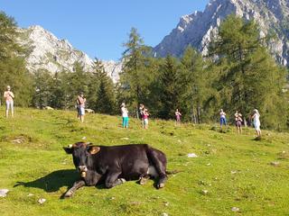 Yoga Aktiv Seminar mit Wandern - Reise zu deiner Quelle - Berg- und Seenwelt Österreichs