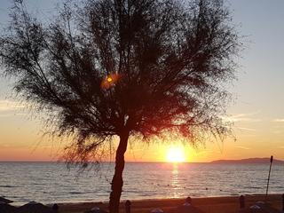 """Seminarurlaub auf Korfu - """"mit allen Sinnen genießen"""" - Yoga, Körperarbeit, Tantra"""