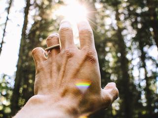 Connect. Body - Mind - Soul. Breath & Wald Retreat.