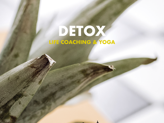 DETOX LIFE COACHING & YOGA