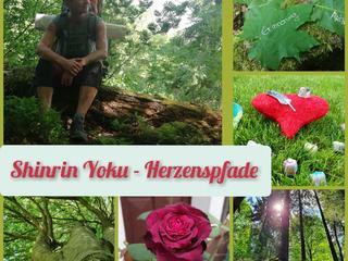 Herbstliche Fortbildung und Auszeit für Menschen mit Herzensangelegenheiten und Naturverbundenheit!