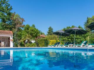 8 Tage Retreat Yourself - veganes Yoga Retreat in der blühenden Provence